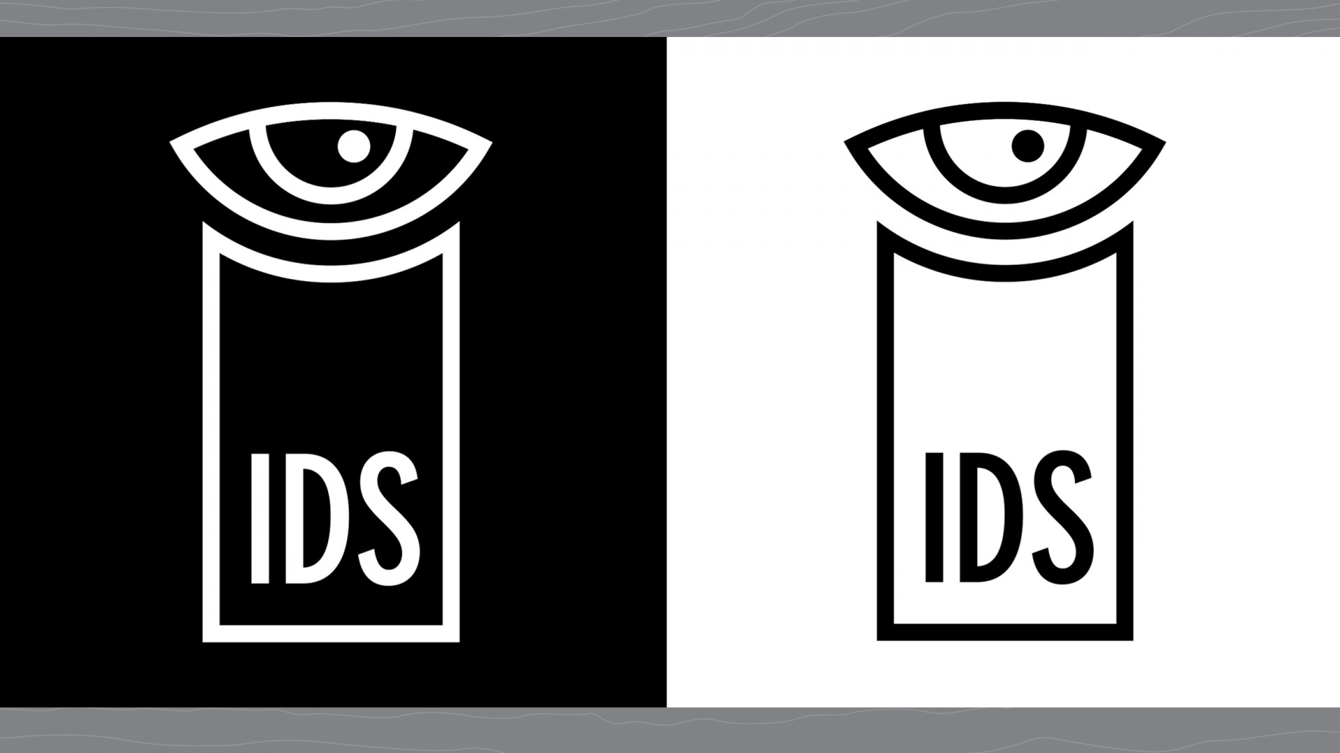 Proposed new primary brand marks for IDS.